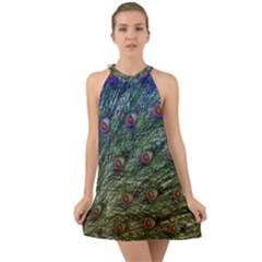 Peacock Feathers Colorful Feather Halter Tie Back Chiffon Dress