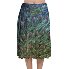 Peacock Feathers Colorful Feather Velvet Flared Midi Skirt by Pakrebo