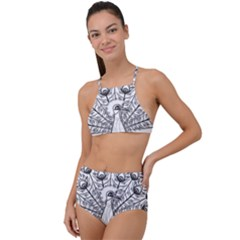 Peacock Plumage Display Bird High Waist Tankini Set by Pakrebo