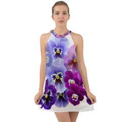 Pansy Isolated Violet Nature Halter Tie Back Chiffon Dress