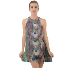 Peacock Bird Pattern Halter Tie Back Chiffon Dress