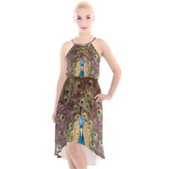 Peacock Feather Peacock Feather High Low Halter Chiffon Dress