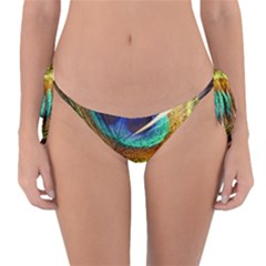 Peacock Feather Colorful Peacock Reversible Bikini Bottom by Pakrebo