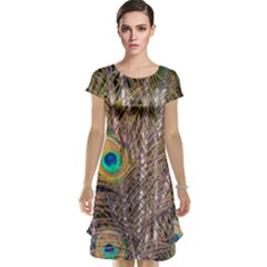 Pen Peacock Wheel Plumage Colorful Cap Sleeve Nightdress