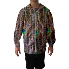 Pen Peacock Wheel Plumage Colorful Kids  Hooded Windbreaker