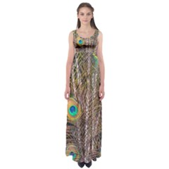 Pen Peacock Wheel Plumage Colorful Empire Waist Maxi Dress