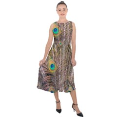Pen Peacock Wheel Plumage Colorful Midi Tie Back Chiffon Dress
