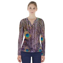 Pen Peacock Wheel Plumage Colorful V Neck Long Sleeve Top