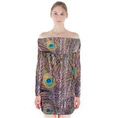Pen Peacock Wheel Plumage Colorful Long Sleeve Off Shoulder Dress