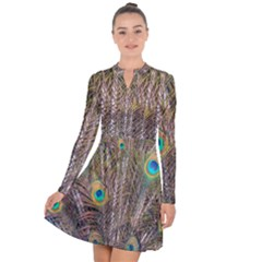 Pen Peacock Wheel Plumage Colorful Long Sleeve Panel Dress