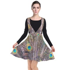 Pen Peacock Wheel Plumage Colorful Plunge Pinafore Dress
