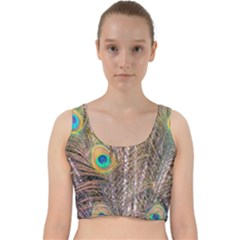 Pen Peacock Wheel Plumage Colorful Velvet Racer Back Crop Top