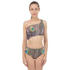 Pen Peacock Wheel Plumage Colorful Spliced Up Two Piece Swimsuit