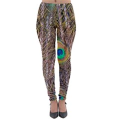 Pen Peacock Wheel Plumage Colorful Lightweight Velour Leggings