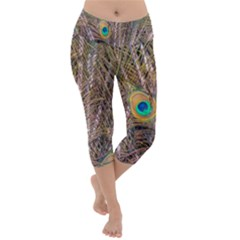 Pen Peacock Wheel Plumage Colorful Lightweight Velour Capri Yoga Leggings