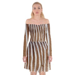 Skin Zebra Striped White Brown Off Shoulder Skater Dress