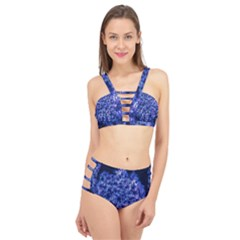 Queen Annes Lace In Blue Cage Up Bikini Set