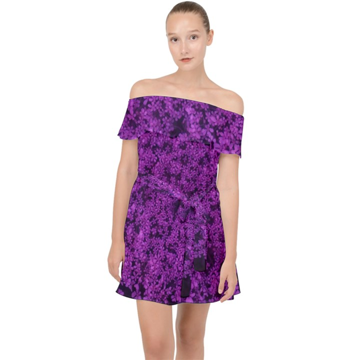 Queen Annes Lace in Purple Off Shoulder Chiffon Dress
