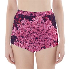 Queen Annes Lace In Red Part Ii High Waisted Bikini Bottoms