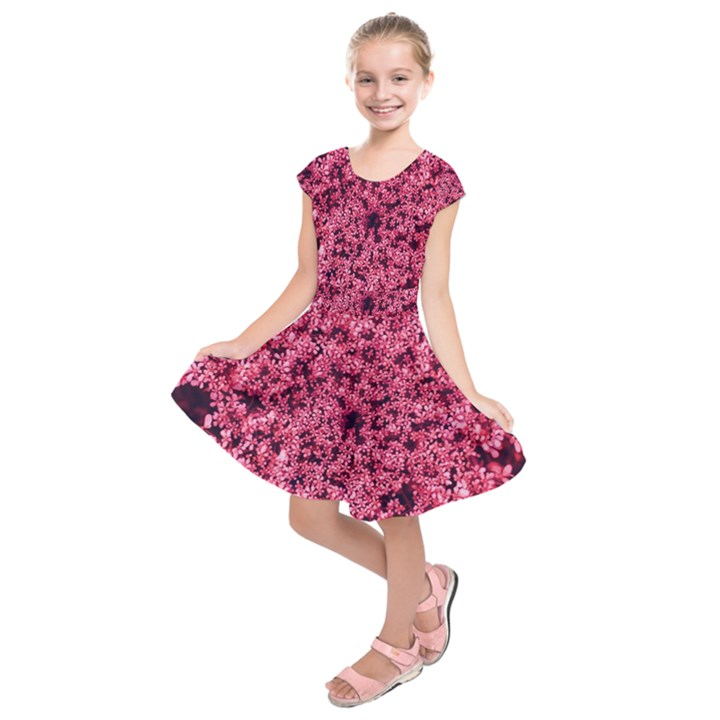 Queen Annes Lace in Red Part II Kids  Short Sleeve Dress
