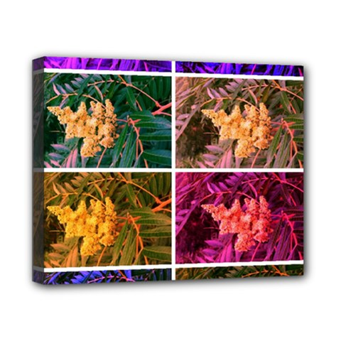 Sideways Sumac Collage Canvas 10  X 8  (stretched)