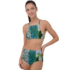 Queen Annes Lace Vertical Slice Collage High Waist Tankini Set by okhismakingart