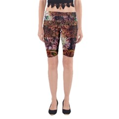 Queen Annes Lace Horizontal Slice Collage Yoga Cropped Leggings by okhismakingart