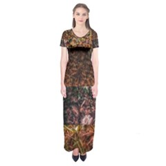 Queen Annes Lace Horizontal Slice Collage Short Sleeve Maxi Dress by okhismakingart