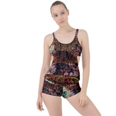 Queen Annes Lace Horizontal Slice Collage Boyleg Tankini Set  by okhismakingart