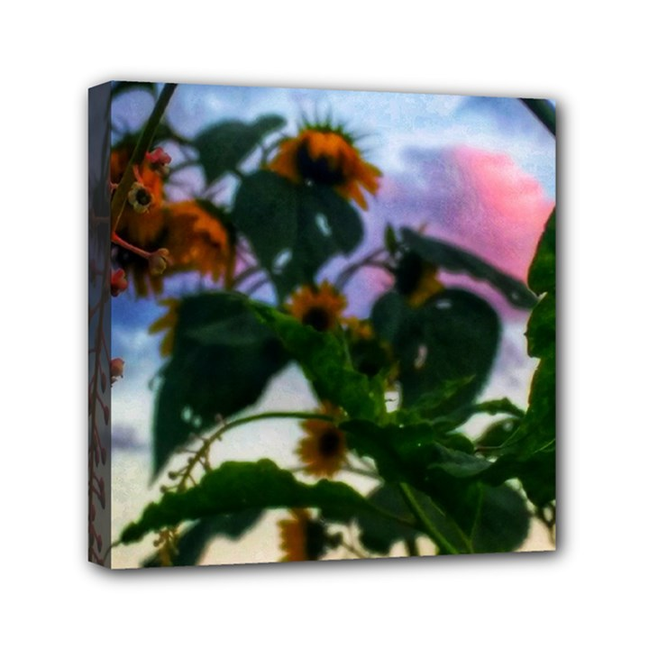 Sunflowers and Wild Weeds Mini Canvas 6  x 6  (Stretched)