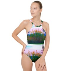 Field Of Goldenrod High Neck One Piece Swimsuit