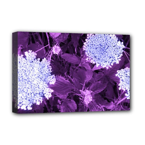 Queen Anne s Lace With Purple Leaves Deluxe Canvas 18  X 12  (stretched) by okhismakingart