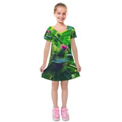 Bur Flowers Kids  Short Sleeve Velvet Dress by okhismakingart