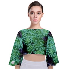 Green Queen Anne s Lace Landscape Tie Back Butterfly Sleeve Chiffon Top by okhismakingart