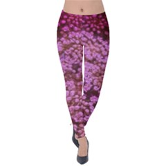 Pink Queen Anne s Lace Landscape Velvet Leggings by okhismakingart