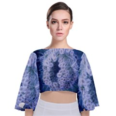 Light Blue Closing Queen Annes Lace Tie Back Butterfly Sleeve Chiffon Top