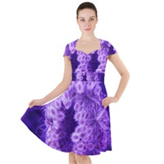 Dark Purple Closing Queen Annes Lace Cap Sleeve Midi Dress