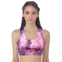 Pink Closing Queen Annes Lace Sports Bra