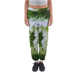Green Closing Queen Annes Lace Women s Jogger Sweatpants
