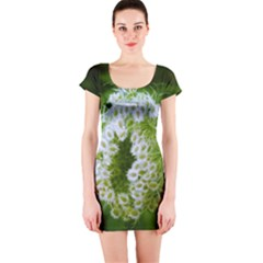 Green Closing Queen Annes Lace Short Sleeve Bodycon Dress