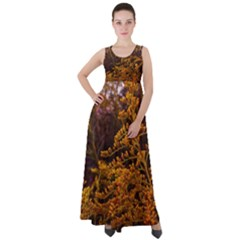 Goldenrod Version Ii Empire Waist Velour Maxi Dress
