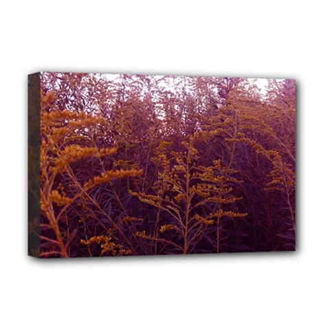 Red And Yellow Goldenrod Deluxe Canvas 18  X 12  (stretched)