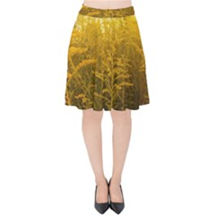 Gold Goldenrod Velvet High Waist Skirt