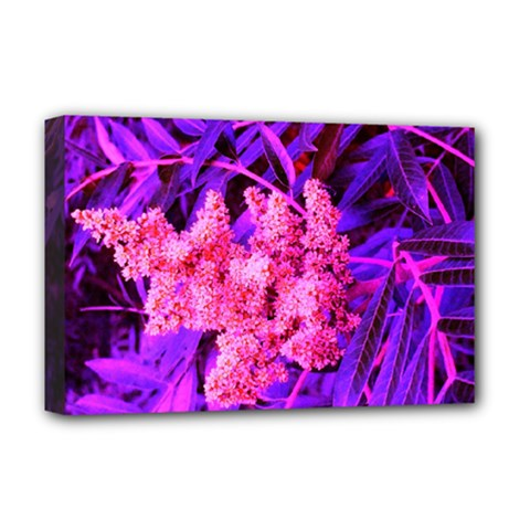 Pink And Blue Sideways Sumac Deluxe Canvas 18  X 12  (stretched)