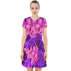 Pink And Blue Sideways Sumac Adorable In Chiffon Dress