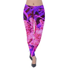 Pink And Blue Sideways Sumac Velvet Leggings