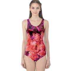 Pink Sideways Sumac One Piece Swimsuit