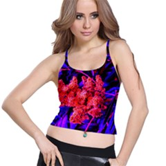 Red And Blue Sideways Sumac Spaghetti Strap Bra Top