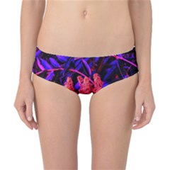 Red And Blue Sideways Sumac Classic Bikini Bottoms