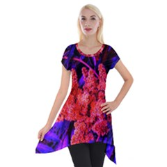 Red And Blue Sideways Sumac Short Sleeve Side Drop Tunic